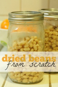 dried_beans_scratch